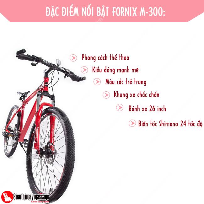 xe-dap-fornix-m-300-do-2