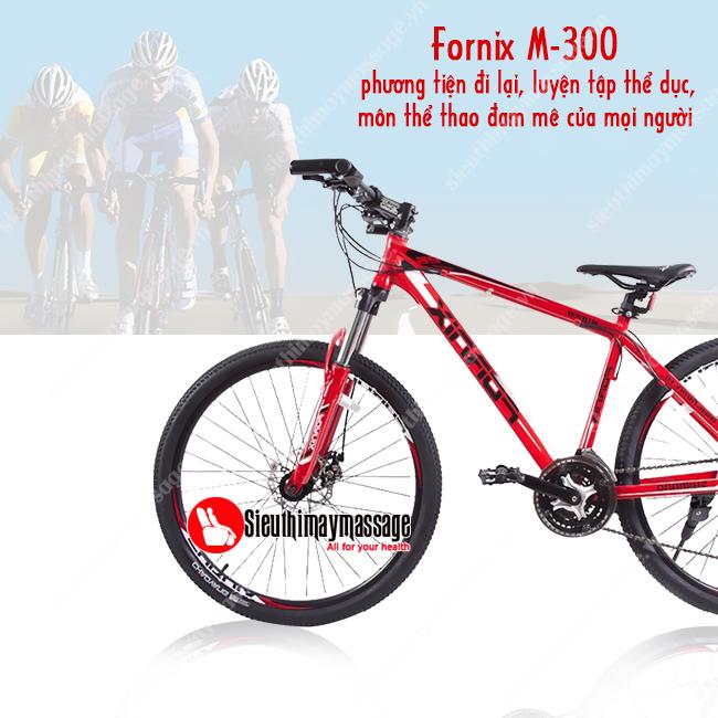 xe-dap-fornix-m-300-mau-do-4