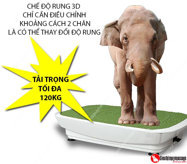 may-rung-toan-than-cao-cap-shika-sk-0952-11