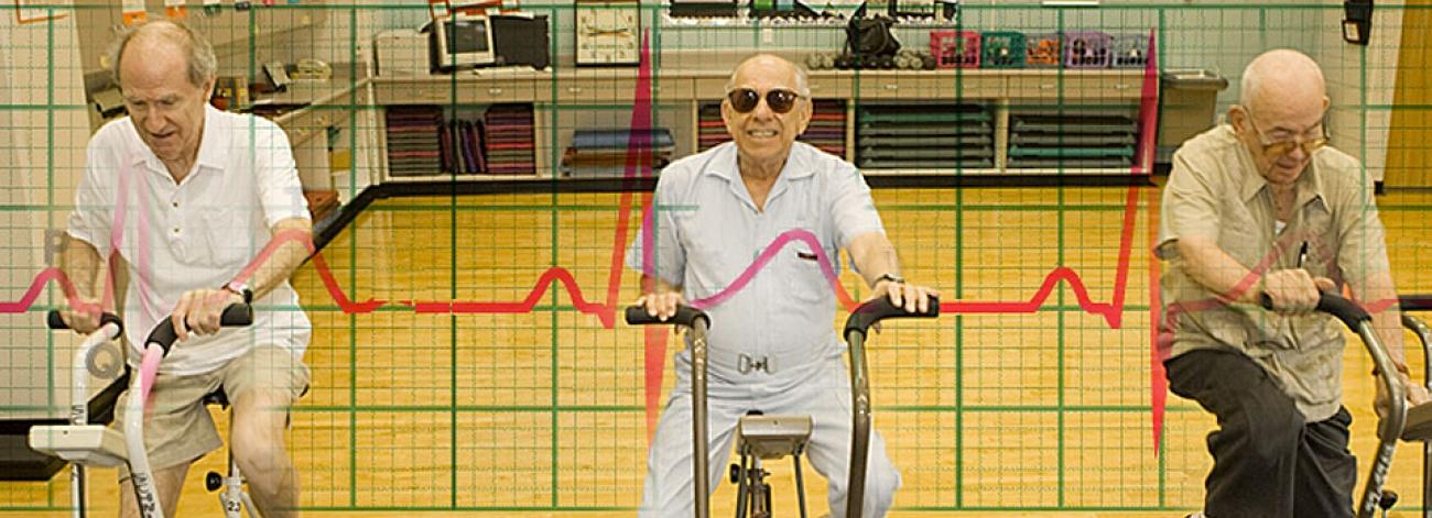 vi sao xe dap the duc ngay cang duoc ua chuong 2 - Vì sao xe đạp tập thể dục lại ngày càng được ưa chuộng?