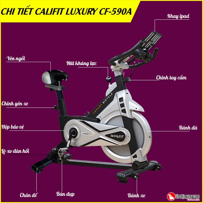 xe dap tap the dục CALIFIT LUXURY CF 590 A 10 - Xe đạp tập thể dục CALIFIT LUXURY CF-590A